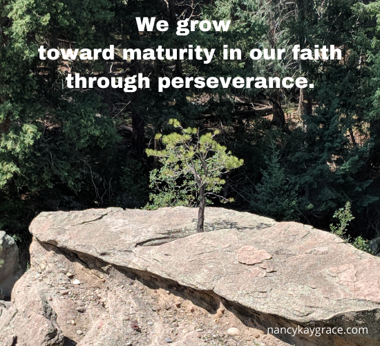 we grow through perseverance